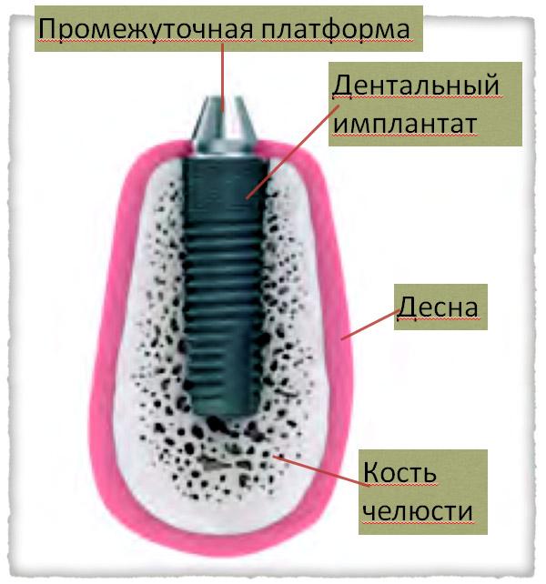 https://kamaltdinov.ru/wp-content/uploads/2020/09/30.jpg